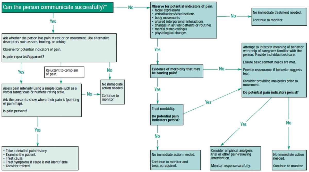 Guidelines and Practical Approaches for the Effective Pain