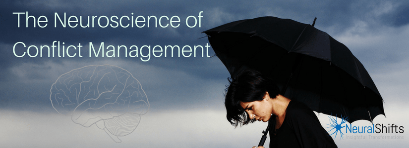 Neuroscience of Conflict Management