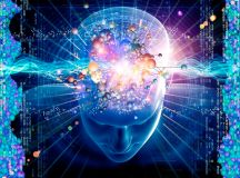 Linking Emotional Intelligence to Neuroscience ...