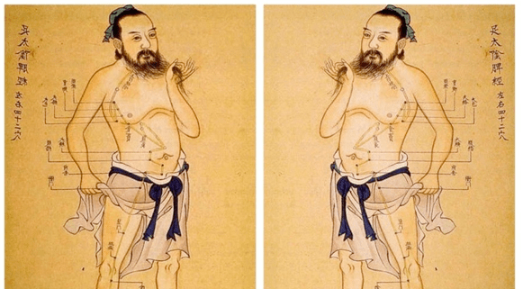 Chinese Meridians And Acupuncture Points