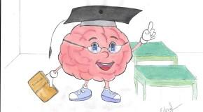 Cómo se forma un neurocientífico