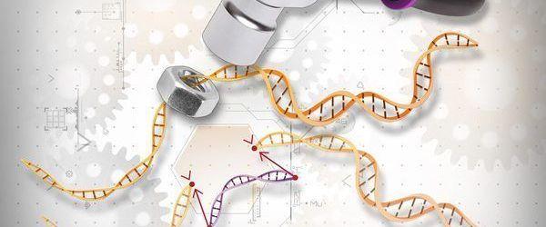 Edición de genes 3.0
