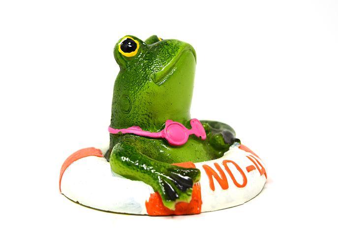 frog-3167466__480