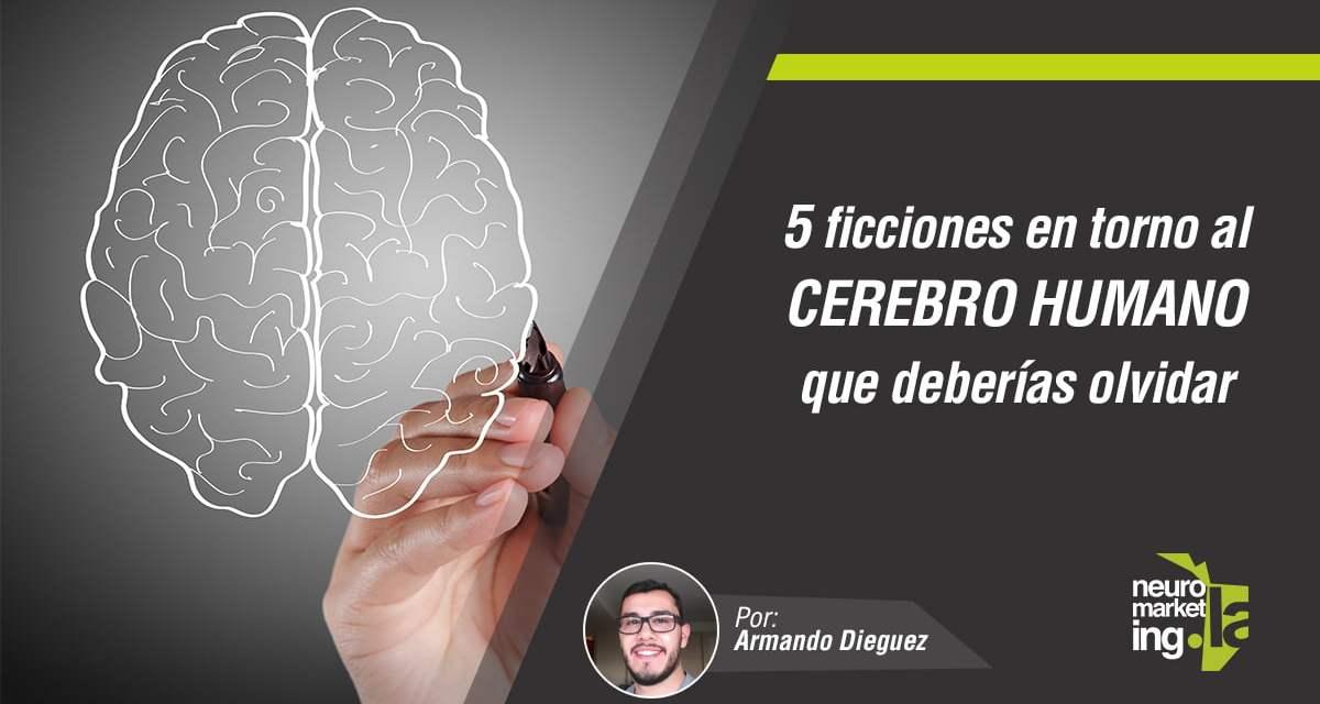 5 ficciones en torno al cerebro humano que deberías olvidar