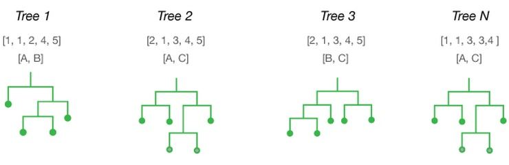 Random Forest — the go-to machine learning algorithm