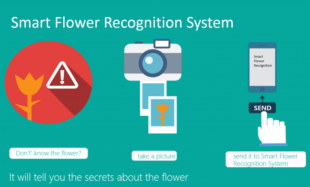 Researchers team up with Chinese botanists on machine learning, flower-recognition project