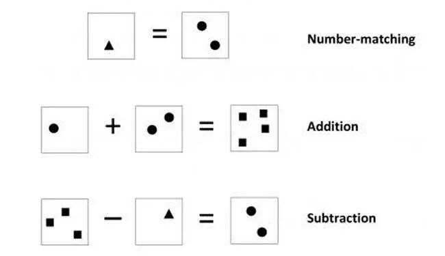 Math Ability Requires Crosstalk in the Brain