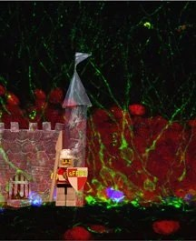 The image shows a lego man acting as a gatekeeper for the brain activity to neuronal growth.