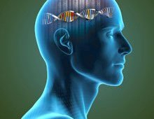 The image shows a human head with a dna double helix inside.