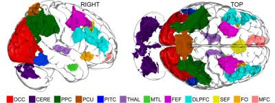 The image shows the eleven areas of the brain identified in the study. The caption best describes the image.