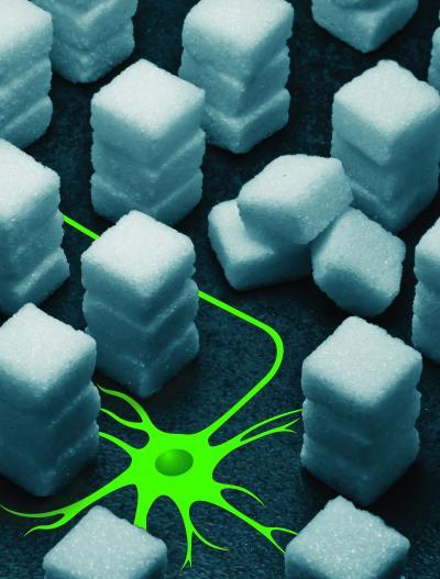 The image shows sugar blocks.