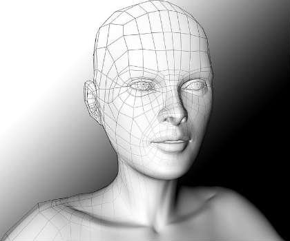 This is a computer generated female face and head.