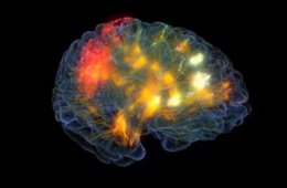 This image shows the brain being lit up with bright colors.
