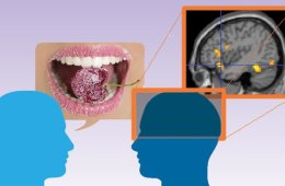This image shows a person eating a sweet, an FMRI brai scan and two outlines of heads. The caption best describes the image.