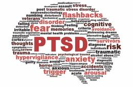 This image shows words associated with PTSD arranged in the shape of a brain.