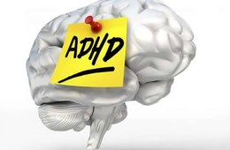 The image shows a brain with a post it note on it. The note reads ADHD.