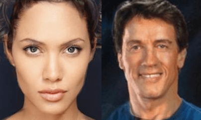 These are two more images from the study. The first shows a morphed image of Angelina Jolie and Halle Berry. The second is a morphed image of Arnold Schwarzenegger and Sylvester Stallone.