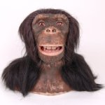 WowWee-Chimpanzee-Alive-Animatronic-Life-Like-Chimp-Robot-Monkey-with-Remote-0