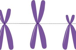 The image shows three purple X's.