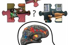 This image shows the outline of a head with an MRI brain image superimposed. Surrounding the head are some jig-saw pieces with scenes from the Sims in them.