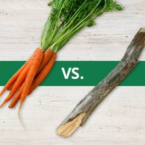 This image shows a carrot and a stick.