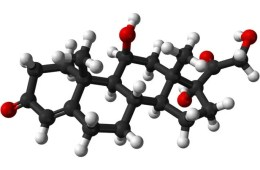 This image shows a ball and stick model of the cortisol molecule.