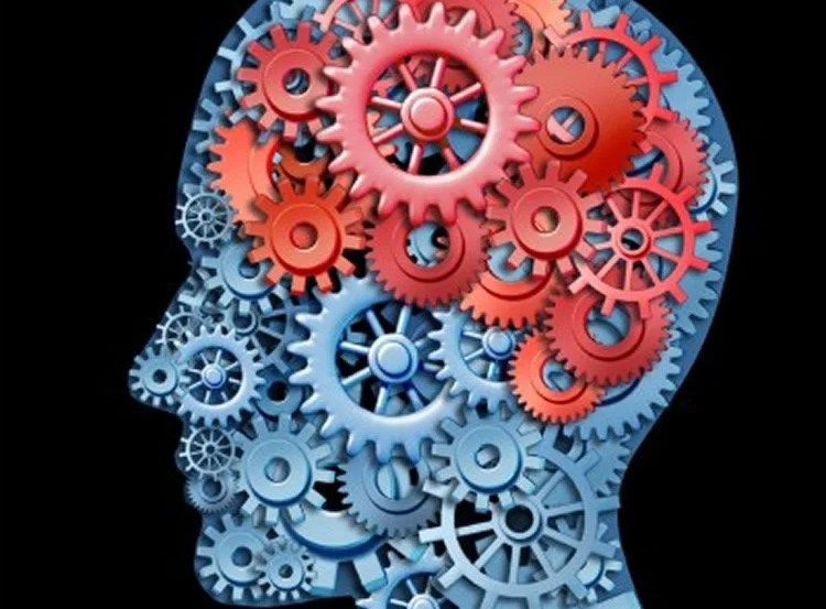 This image shows a human head made up of cog wheels.