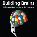 Building-Brains-An-Introduction-to-Neural-Development-0