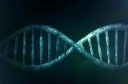 Image shows a blue DNA double helix.