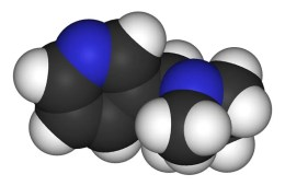 This shows the 3d structure of nicotine.