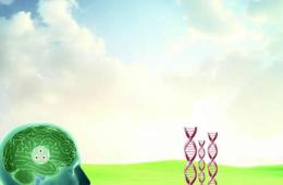 Drawing of a person with the brain exposed. They are standing in a field and DNA strands are sprouting like beanstalks.