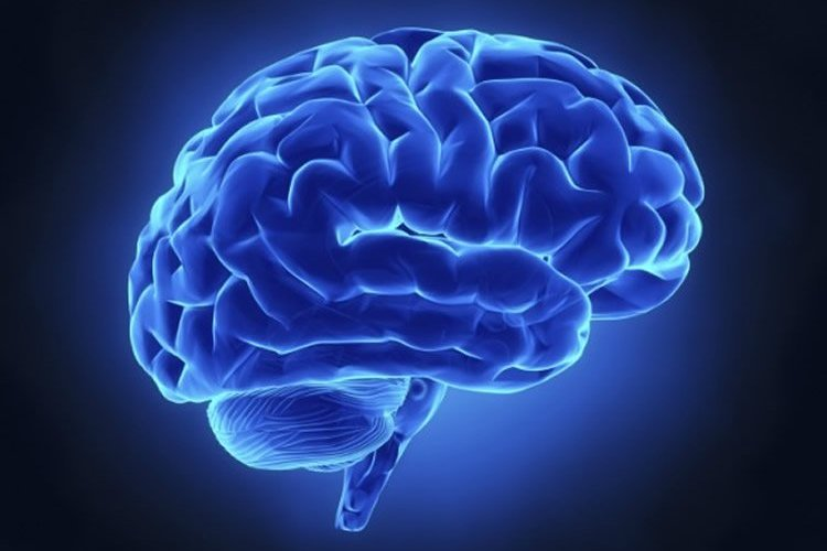 Computer generated image of a blue brain.