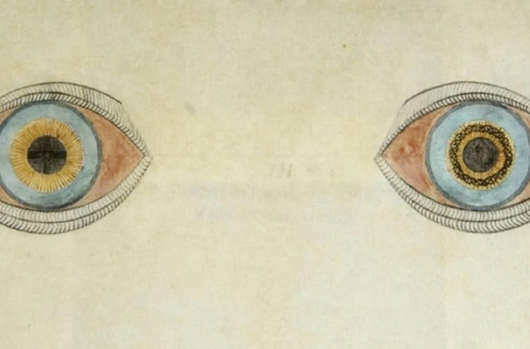 Image shows a drawing of two eyes with different colored pupils.