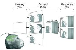 Illustration shows the experimental set up. The caption provides a more detailed description.