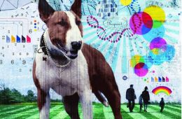 Image shows a pitbull dog and genetic coding.