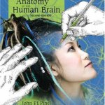 A-Colorful-Introduction-to-the-Anatomy-of-the-Human-Brain-A-Brain-and-Psychology-Coloring-Book-2nd-Edition-0