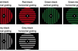 Image shows different color discs.