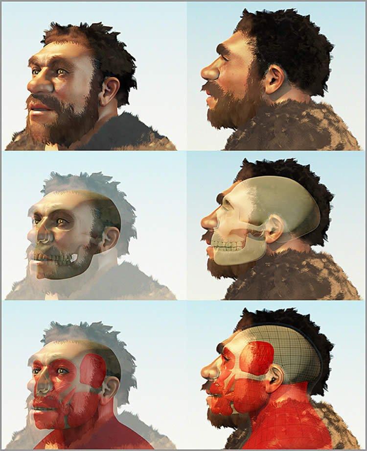 Obraz przedstawia sądową rekonstrukcję Homo neanderthalensis.