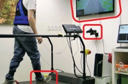 """Participants were assigned to treadmill training with virtual reality (146) or treadmill training alone (136). The virtual reality component consisted of a camera that captured the movement of participants' feet and projected it onto a screen in front of the treadmill, so that participants could """"see"""" their feet walking on the screen in real time. NeuroscienceNews.com image is credited to AFTAU."""