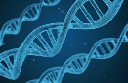 Image shows a dna.