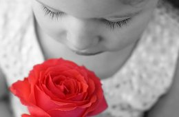Image shows a child smelling a rose.