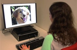 Image shows a person looking at a photo of a dog.