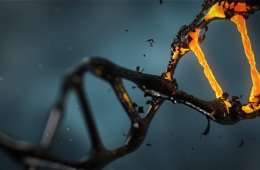 Image shows DNA strands.