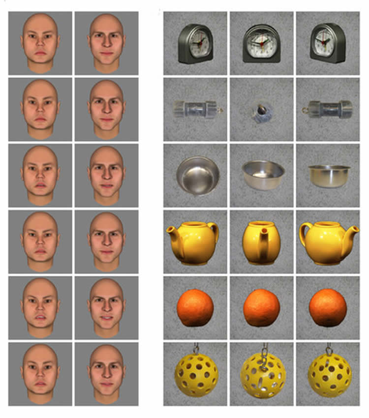 Image shows different facial expressions and photos of objects taken from different perspectives.