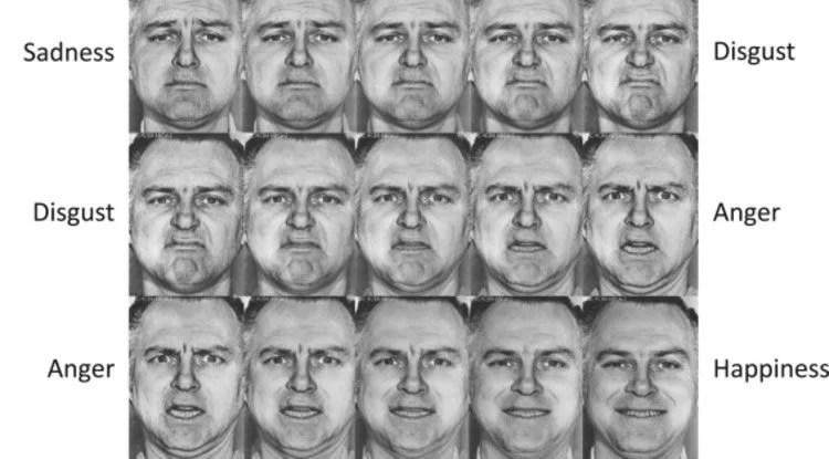 Opinion you differences in facial expressions criticising
