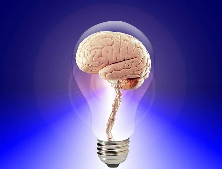 Image shows a brain in a light bulb.