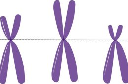 Image shows 3 X's.