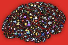 Image shows a brain with lots of images overlaid.