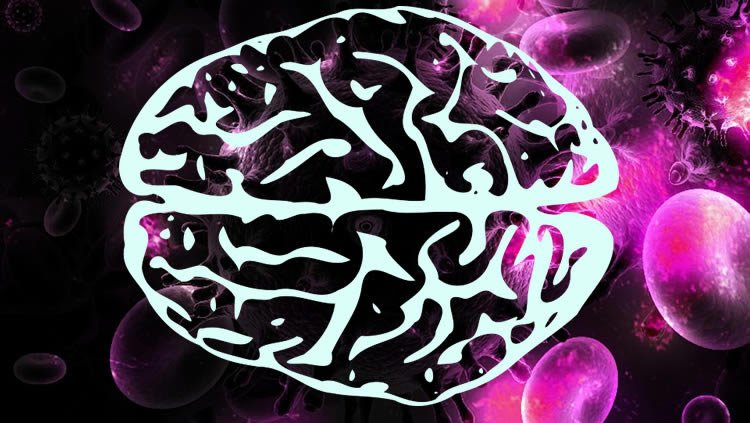 Mathematical Modeling Uncovers Mysteries of HIV Infection in the Brain
