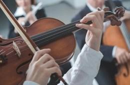 Image shows a violin.